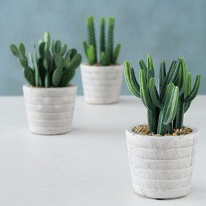 Planta Cactus artificial